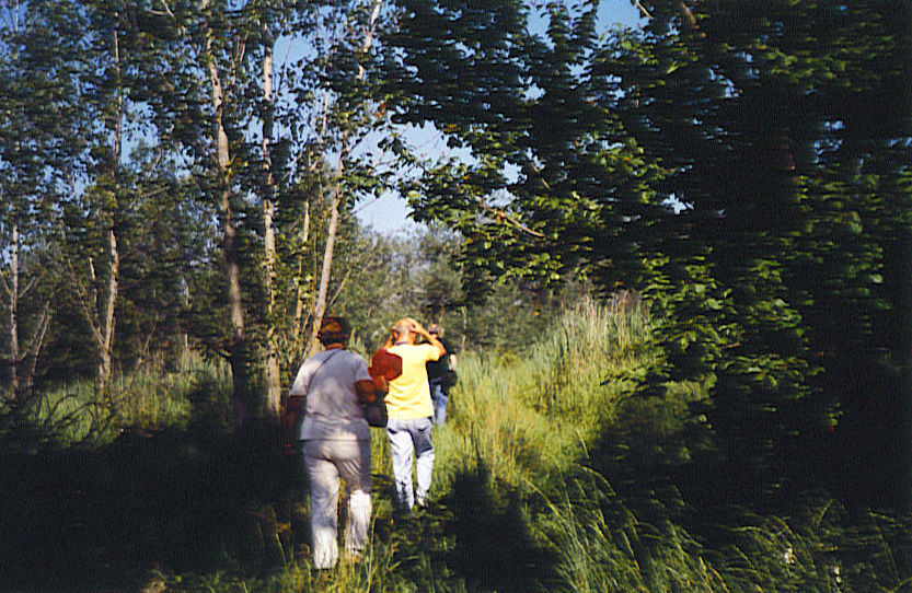Making the treck into Molidorf - Sorin in the lead, followed by Mark, the women-folk tag along behind<br>Click to enlarge